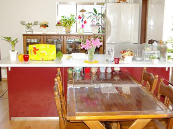 憧れていた対面式のキッチンになって嬉しいです!